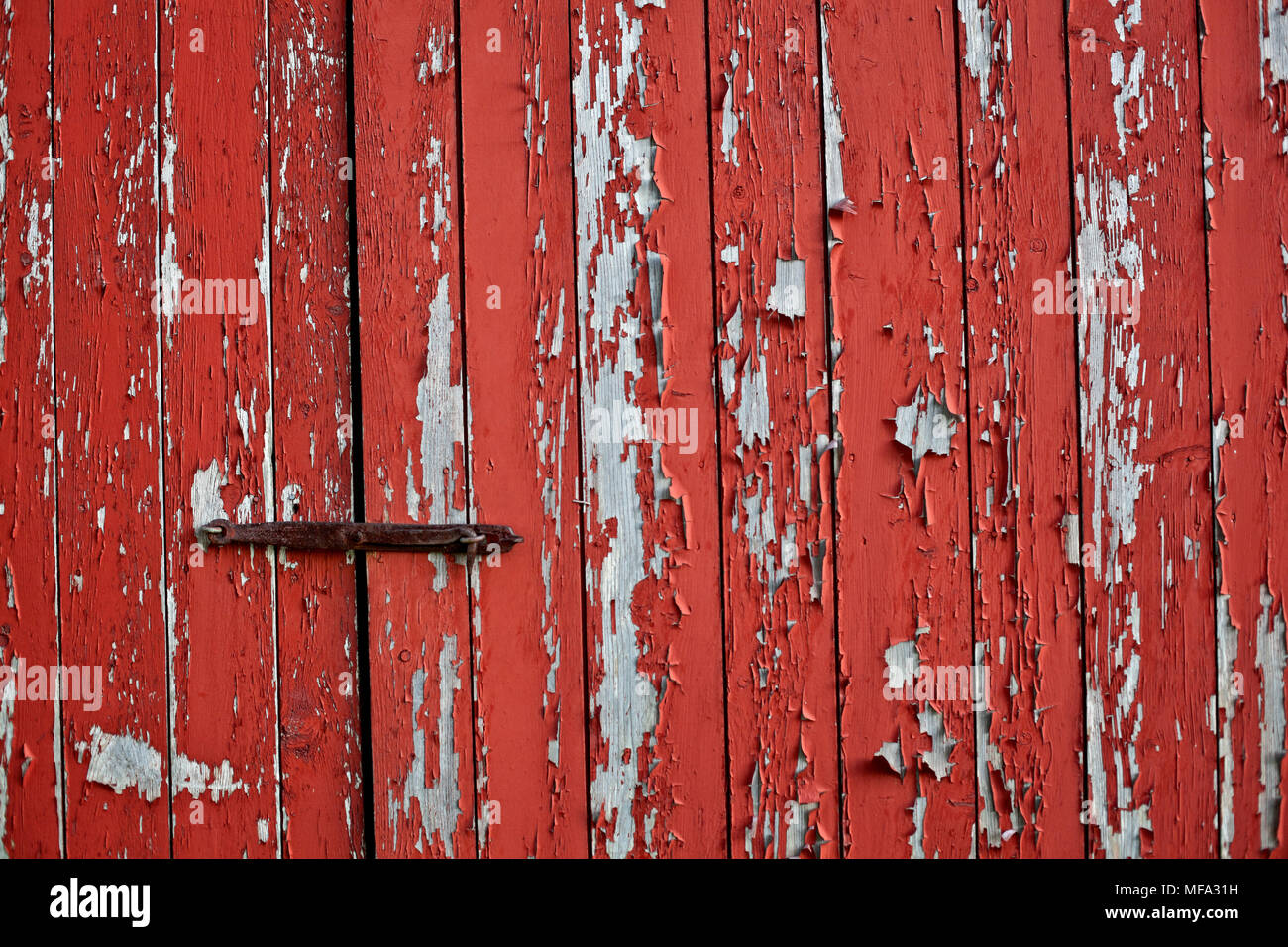 The Life Of An Antique Red Barn Door With Peeling Paint And Old