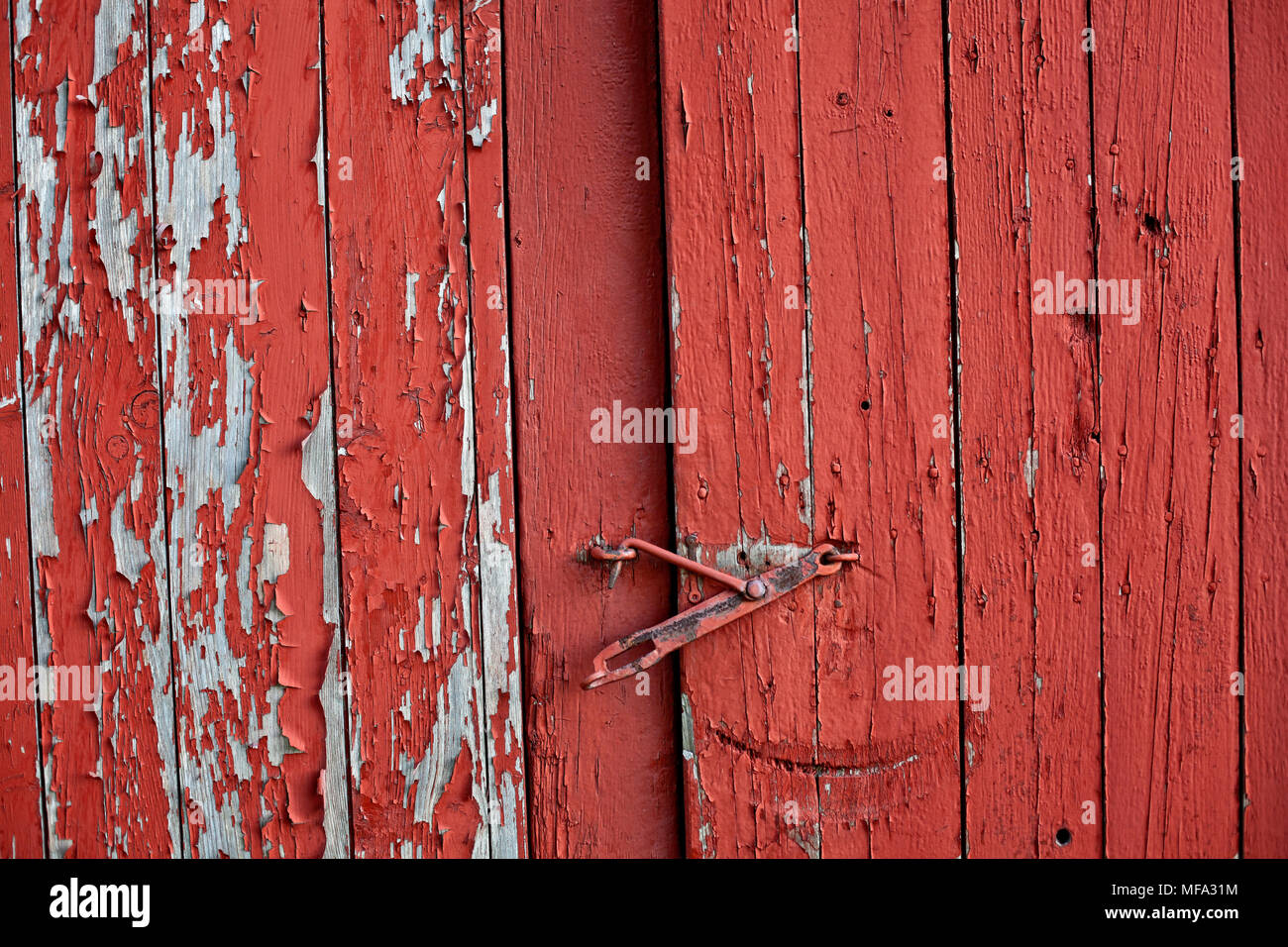 The Life Of An Antique Red Barn Door With Peeling Paint