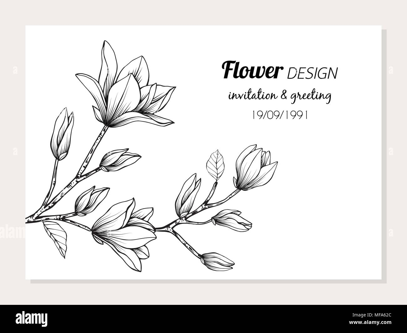 Magnolia Flower Frame Drawing Illustration For Invitation And