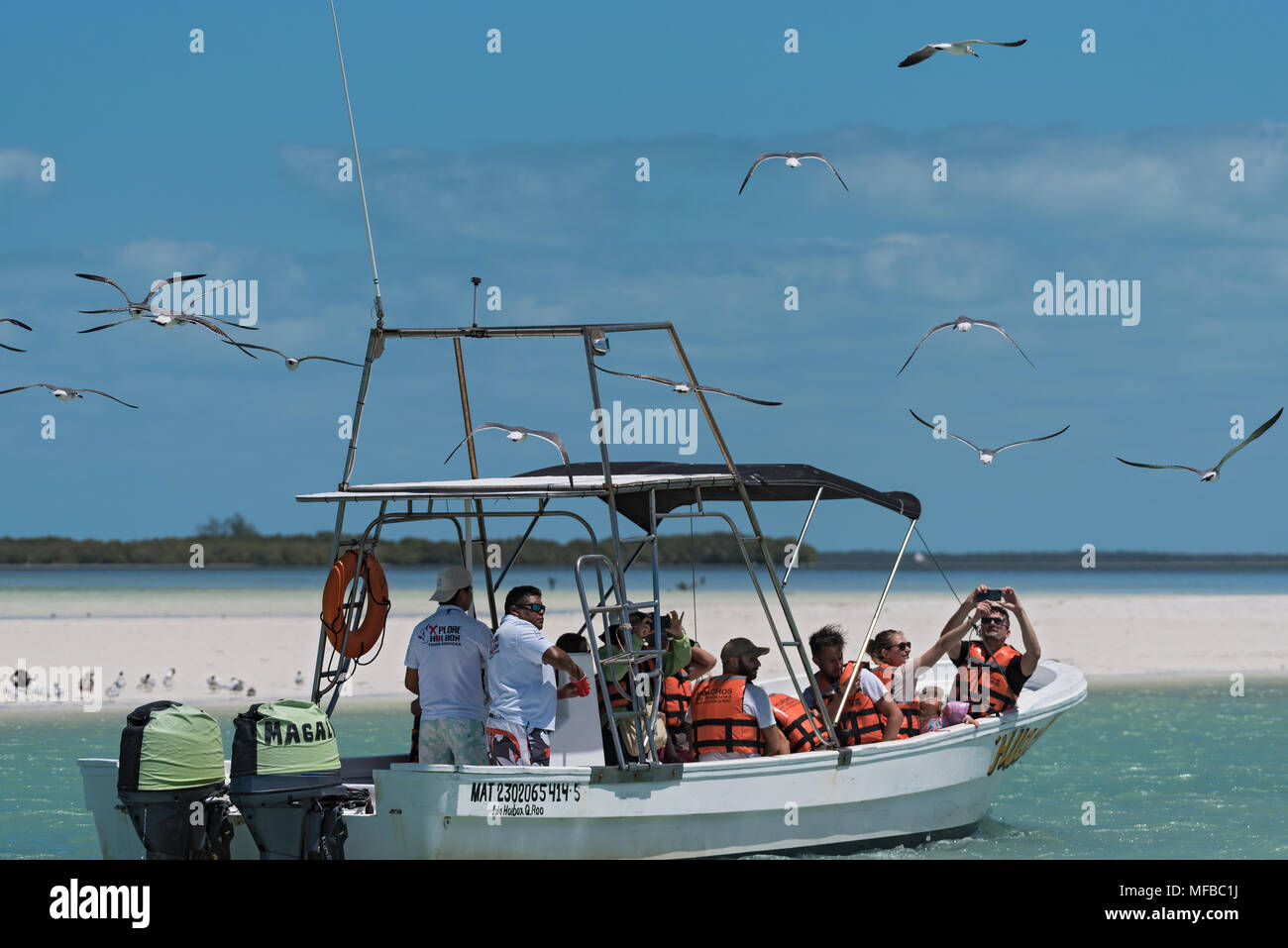 Excursion boat with tourists feeding at the gulls in the Holbox Laguna Conil, Mexico - Stock Image