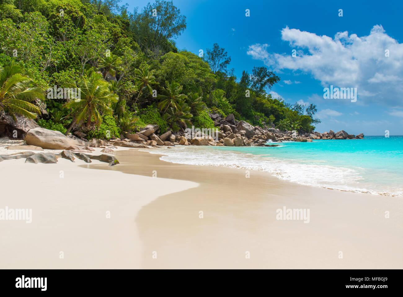 Beautiful Paradise beach - Anse Georgette at Praslin, Seychelles Stock Photo