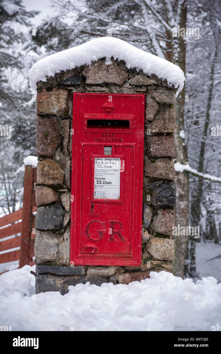 A red British Royal Mail post office post box after a snow storm in the Glenmore forest near Aviemore in the Cairngorms national park in Scotland Stock Photo