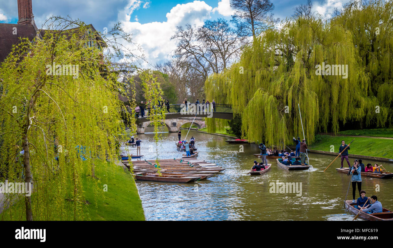 Cambridge, United Kingdom - 17 April, 2016 : People punting on river Cam, enjoying a wonderful weekend - Stock Image