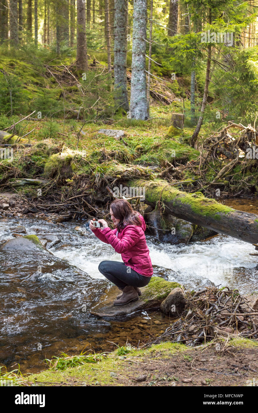 Young beautiful woman hiker taking pictures with its phone while sitting on a rock in the middle of a mountain stream in Black Forest, Germany - Stock Image