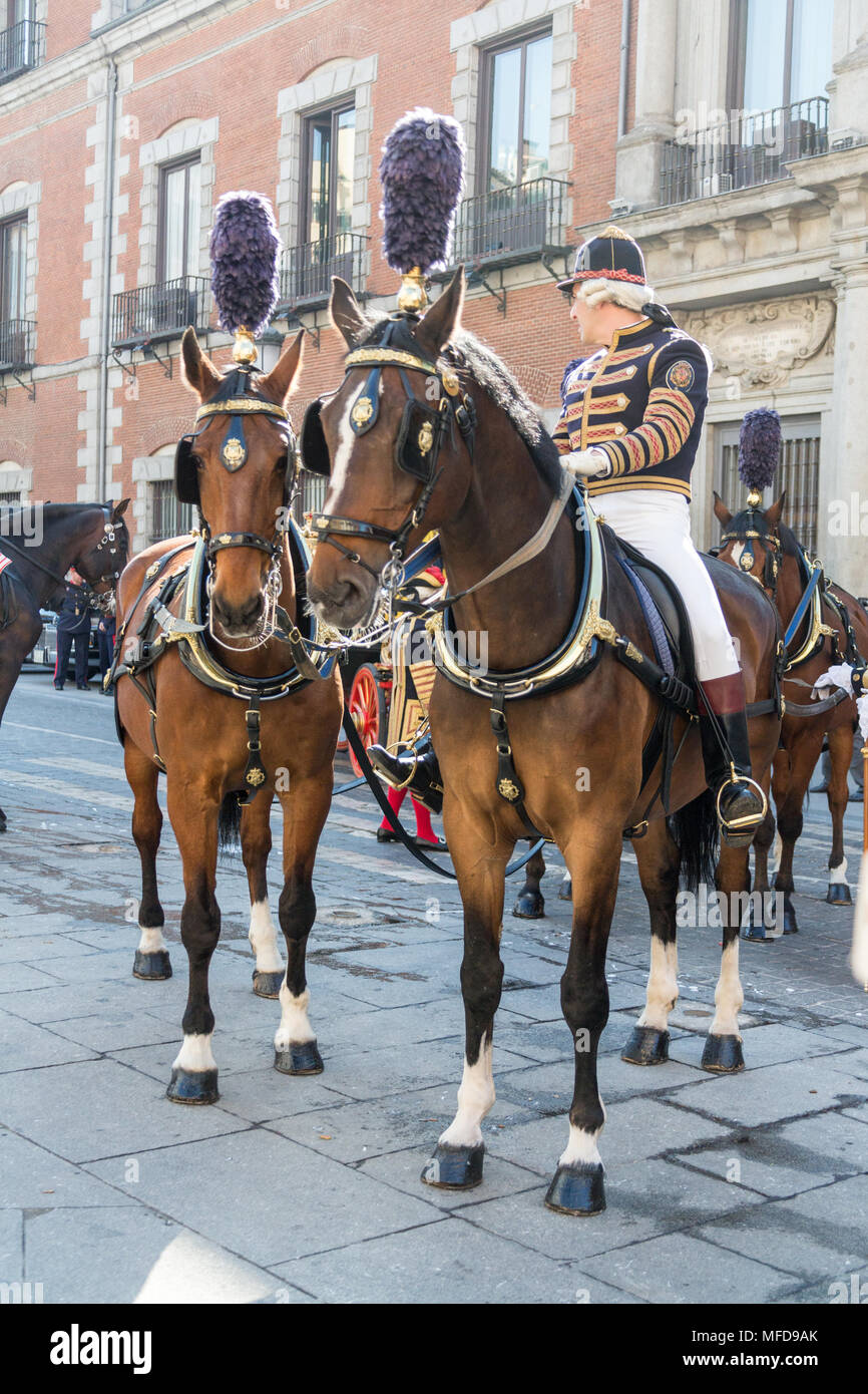 Madrid, Spain - March 11, 2015: A man in ceremonial uniform leads horses pulling a carriage in Plaza de la Provincia in central Madrid on a sunny day. - Stock Image