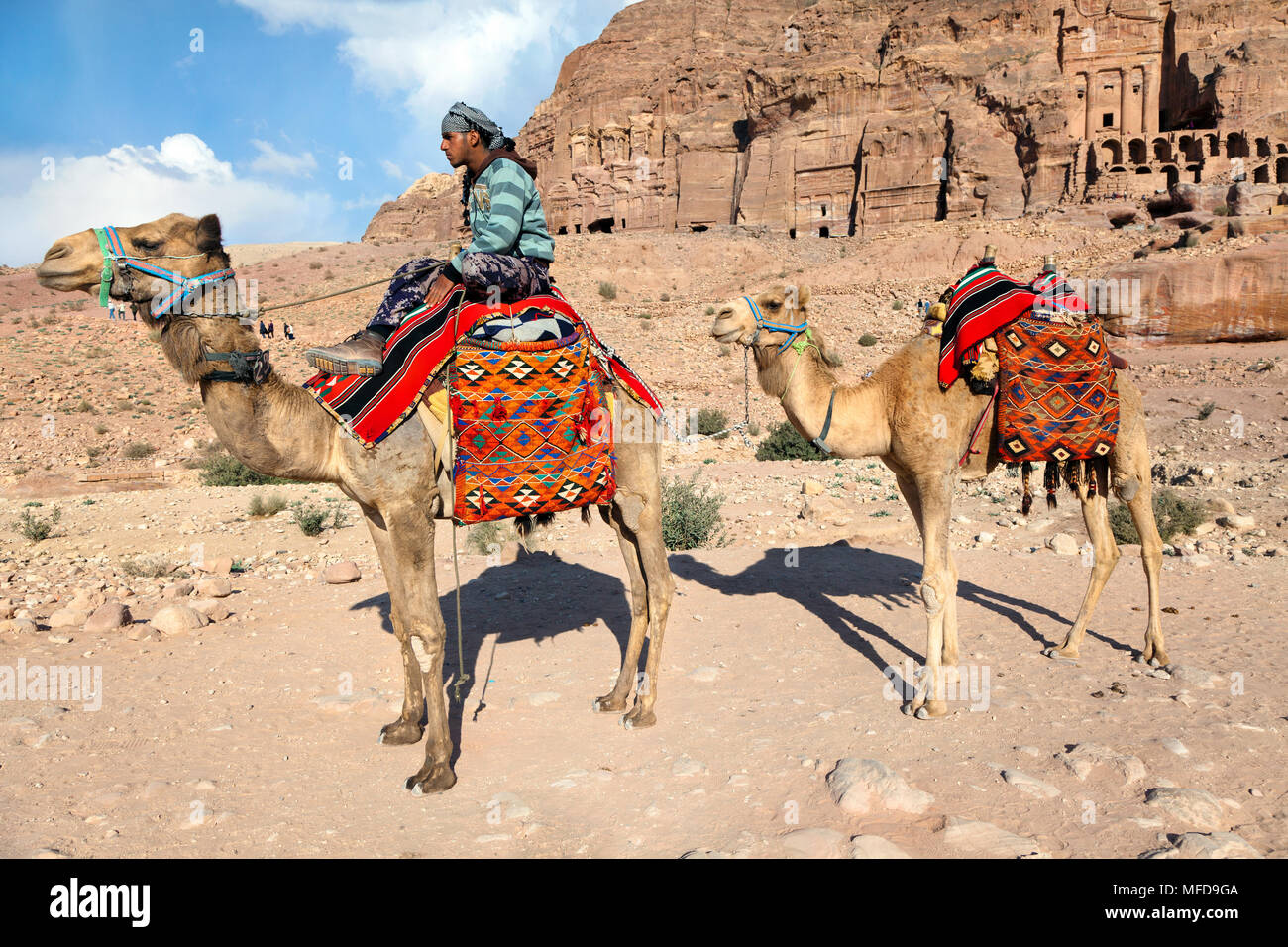 A camel driver riding a camel against the background of the ancient ruins of the city of Petra, Jordan - Stock Image