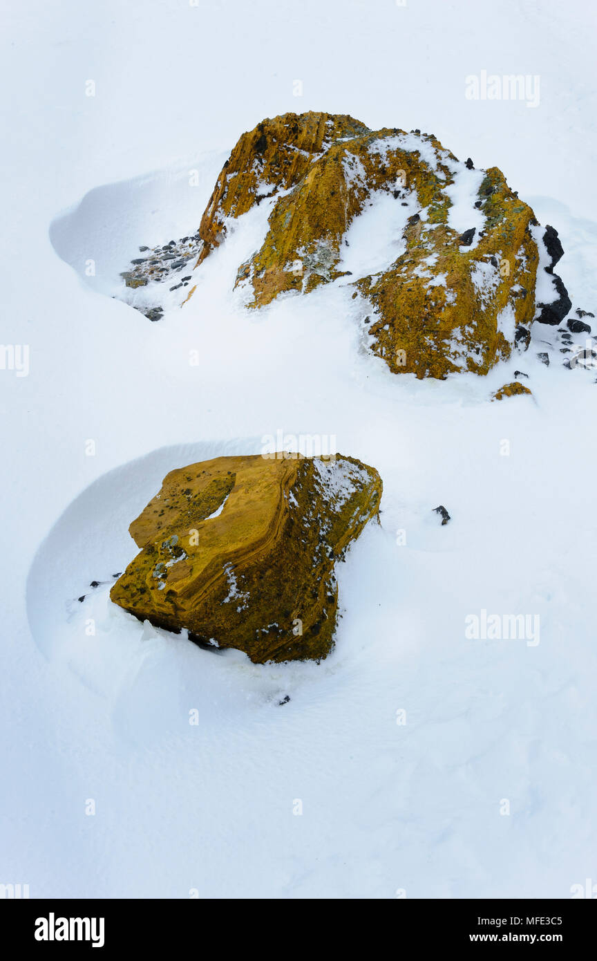 Rocks at Brown Bluff, Antarctic Peninsula, Antarctica. - Stock Image