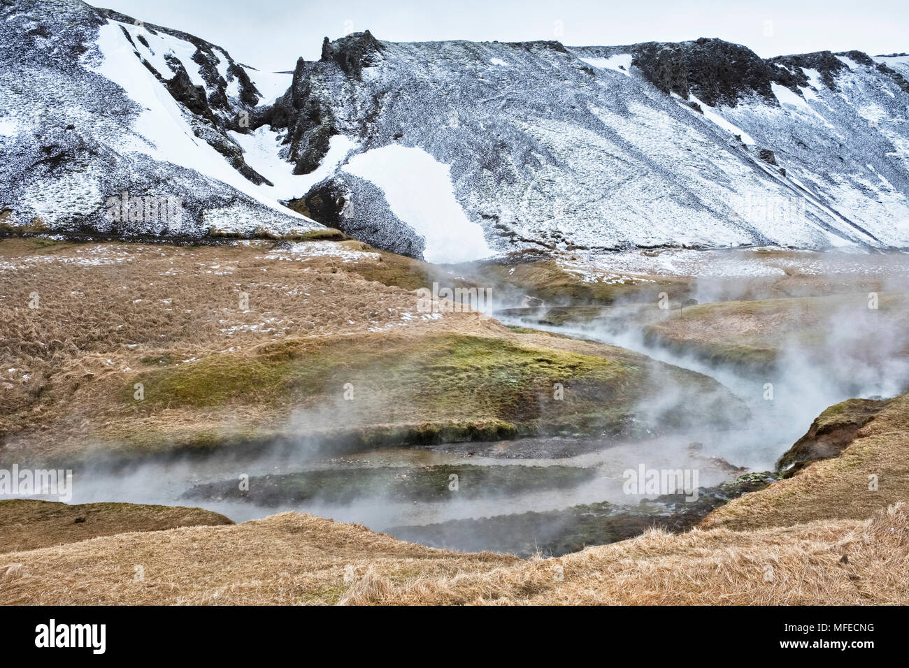 Near Hveragerði, Iceland. Steam rising from the geothermal hot river at Reykjadalur - Stock Image