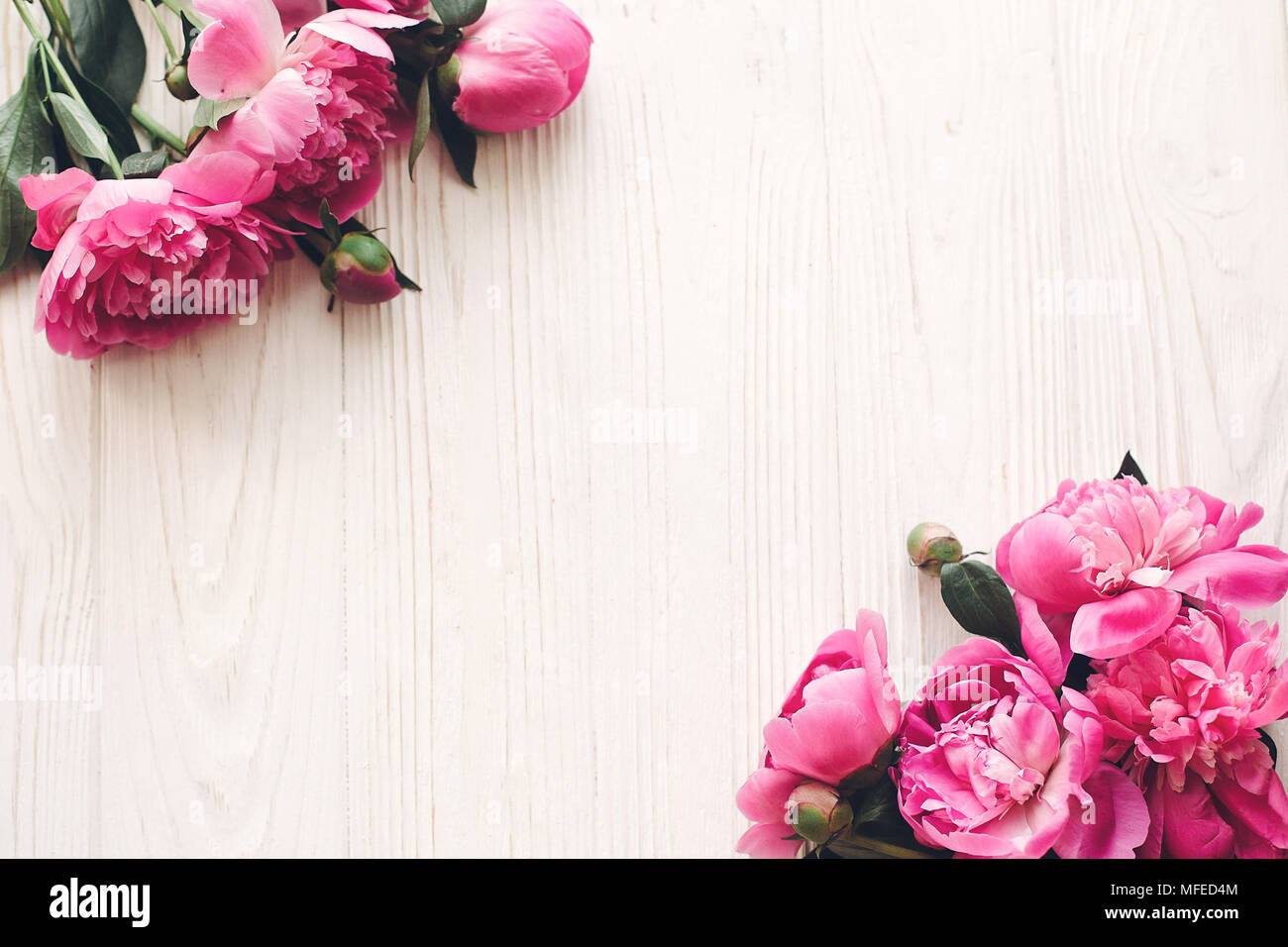 Lovely Pink Peonies Border On Rustic White Wooden Background Top View Space For Text Floral Greeting Card Mock Up Flat Lay Happy Mothers Day Conce