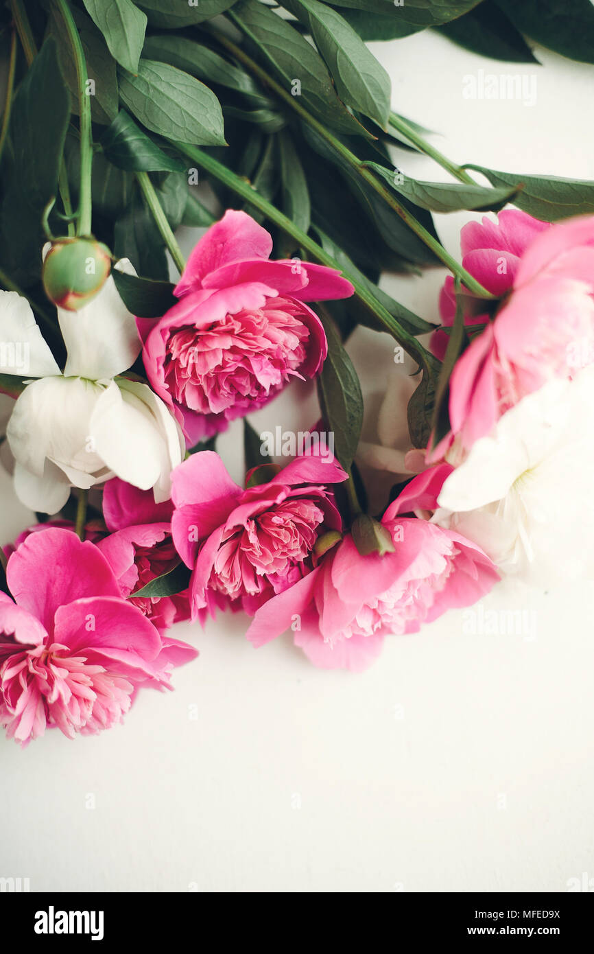 Lovely Pink Peonies On Rustic White Wooden Background Space For