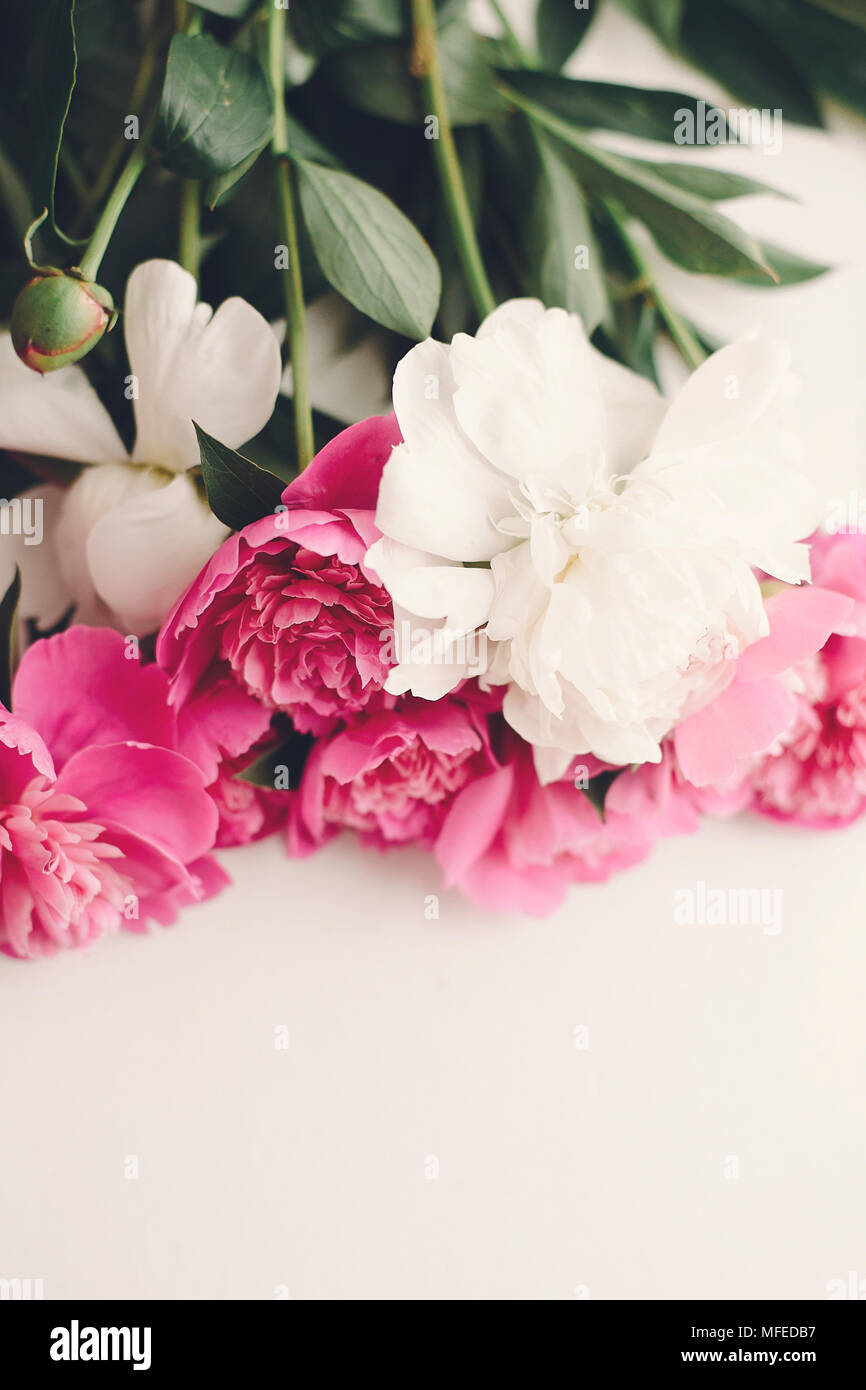 Lovely pink peonies on rustic white wooden background space for lovely pink peonies on rustic white wooden background space for text floral greeting card flat lay beautiful peony flowers tender image happy mo mightylinksfo