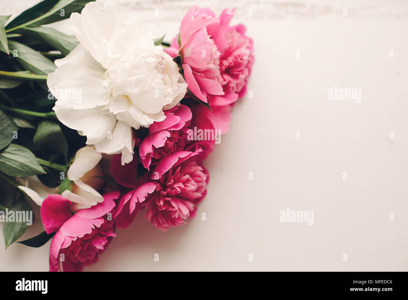 Lovely pink peonies on rustic white wooden background top view lovely pink peonies on rustic white wooden background top view space for text floral greeting card flat lay beautiful peony flowers pattern tende mightylinksfo