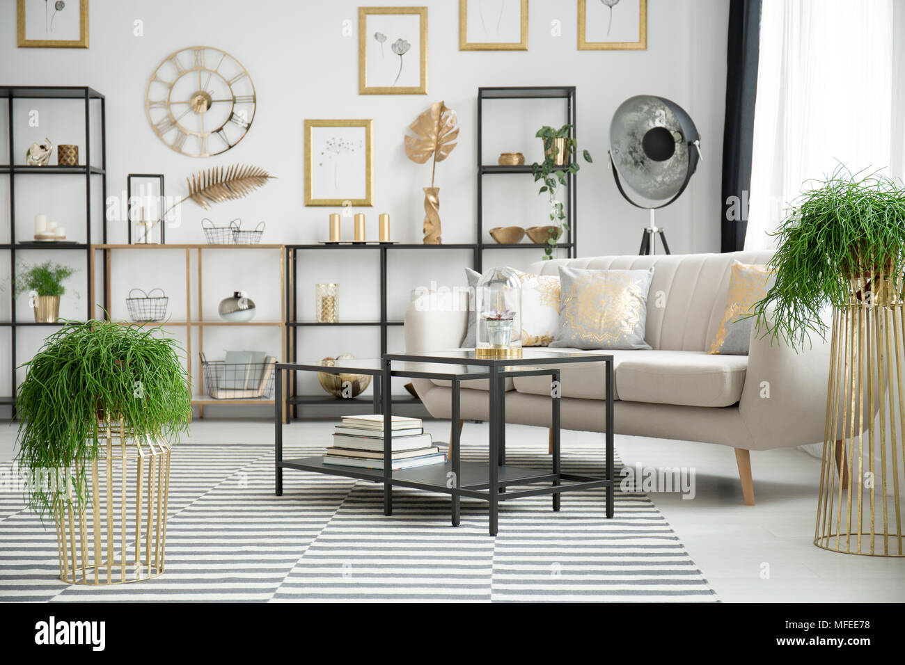 Plants in sophisticated living room interior with black table and ...