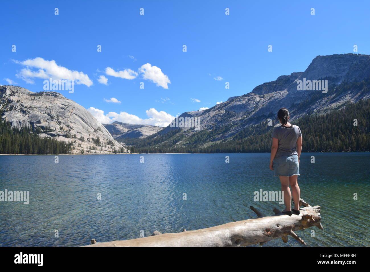 View of Yosemite national Park - Stock Image