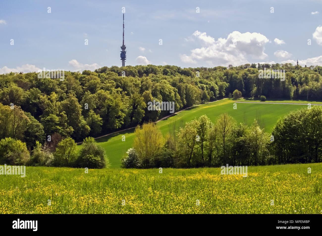 Bettingen/basel this weeks golf betting