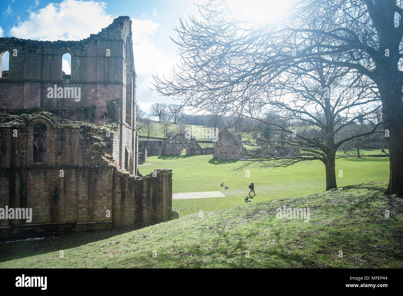 Fountains Abbey, National Trust property, Studley Royal, North Yorkshire - Stock Image