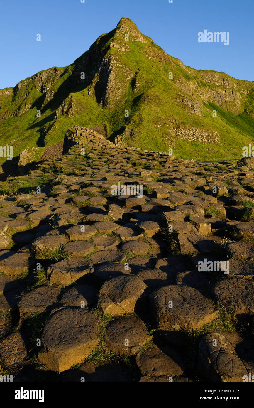 The Giant's Causeway; County Antrim, Northern Ireland.  The Giant's Causeway, a UNESCO World Heritage Site, is an area of interlocking basalt column - Stock Image