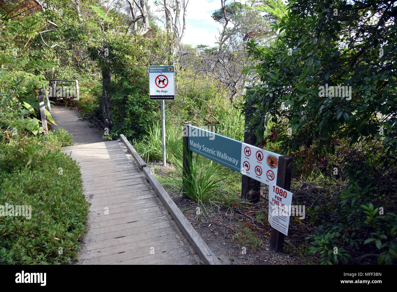 Clontarf, Australia - Feb 4, 2018. The Manly to Spit Bridge Walk. Bushwalking from Manly to Mosman across Sydney Harbour National Park. - Stock Image