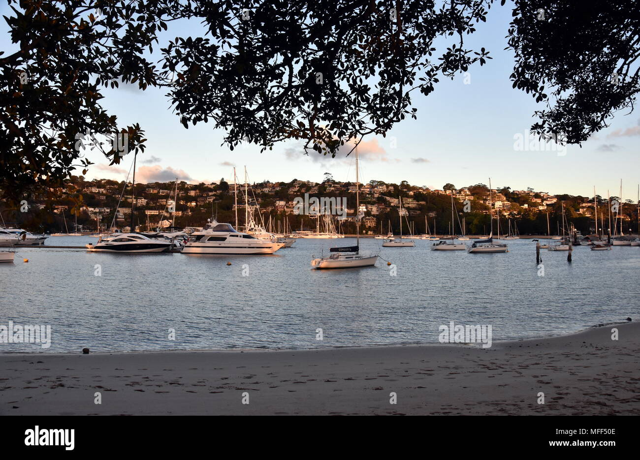 Mosman, Australia - Feb 4, 2018. Many moored yachts and boats in Sandy bay at low tide (The Spit, Sydney, NSW, Australia). - Stock Image