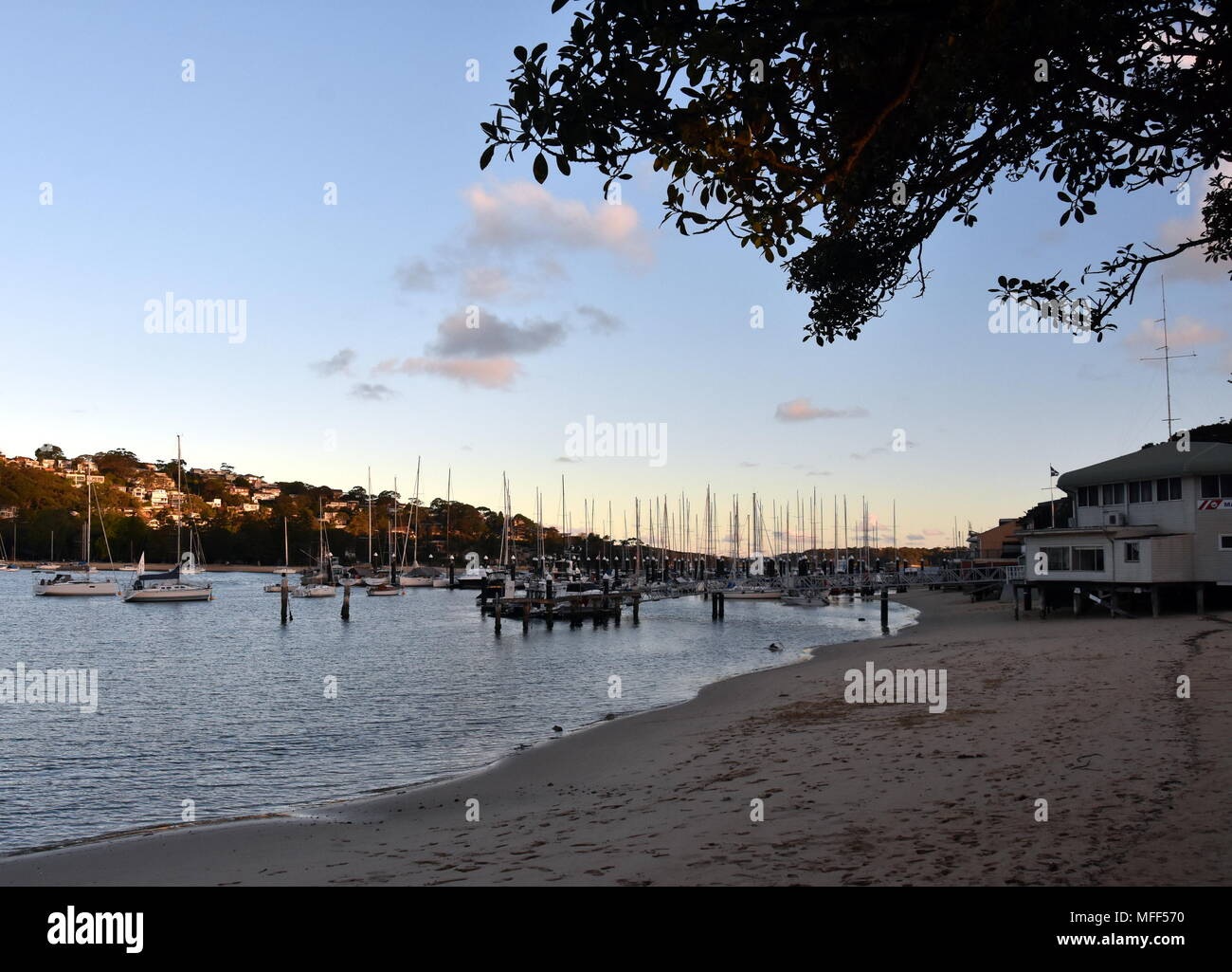 Many moored yachts and boats in Sandy bay at low tide (The Spit, Sydney, NSW, Australia). - Stock Image