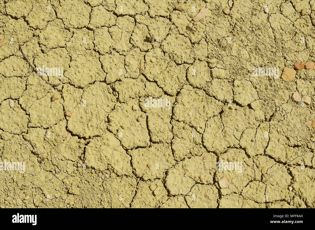 Texture of dry cracked soil from drought - Stock Image