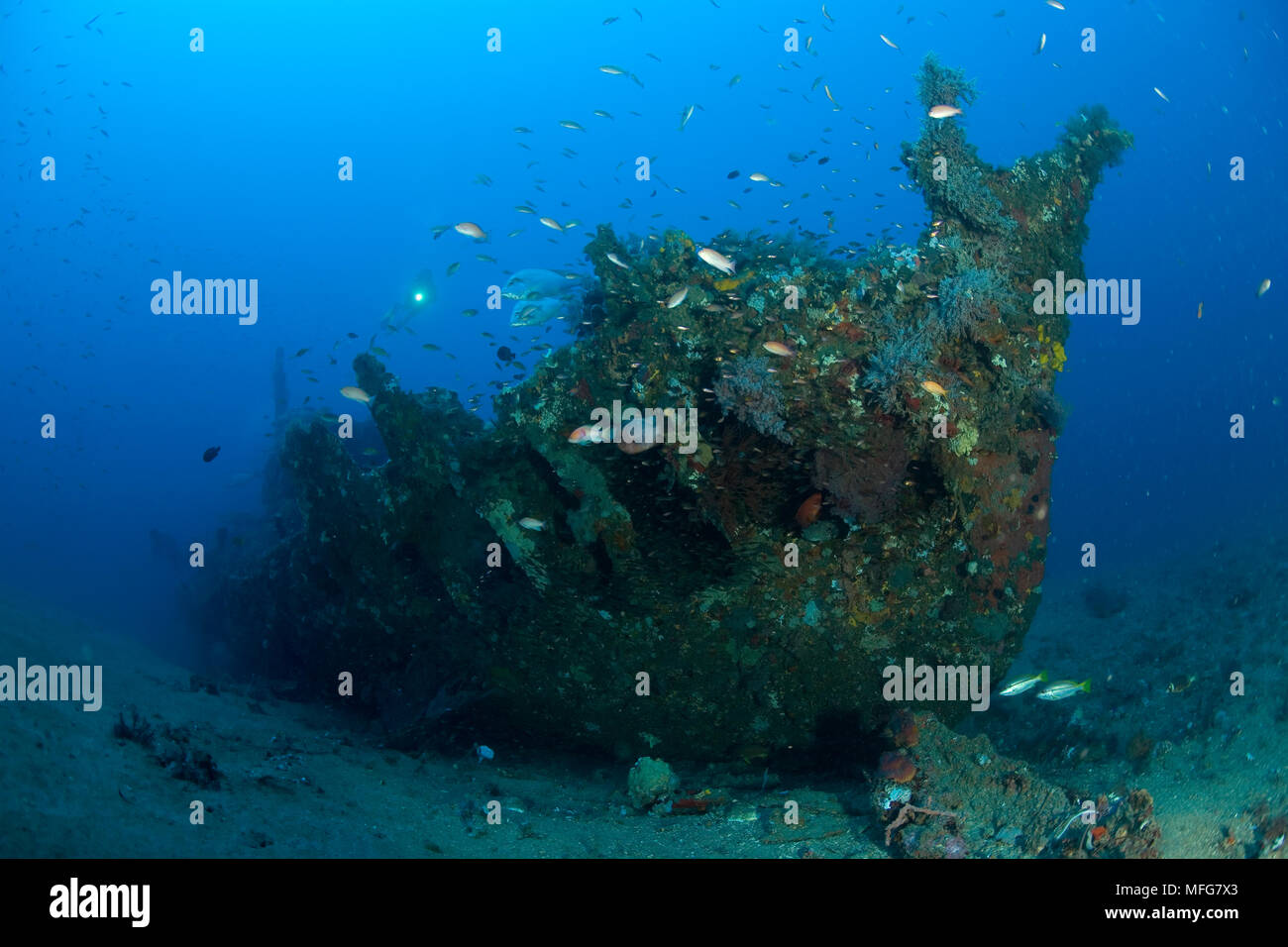Scuba diver with Japanese wreck of II World War, Lombok island, Indonesia, Pacific Ocean  Date: 22.07.08  Ref: ZB777_117103_0020  COMPULSORY CREDIT: O - Stock Image