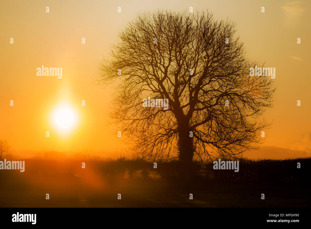 Sunrise over the fields - Stock Image