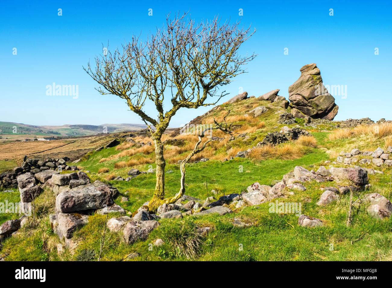 Baldstones Pinnacle, Staffordshire Moorlands, Peak District National Park - Stock Image