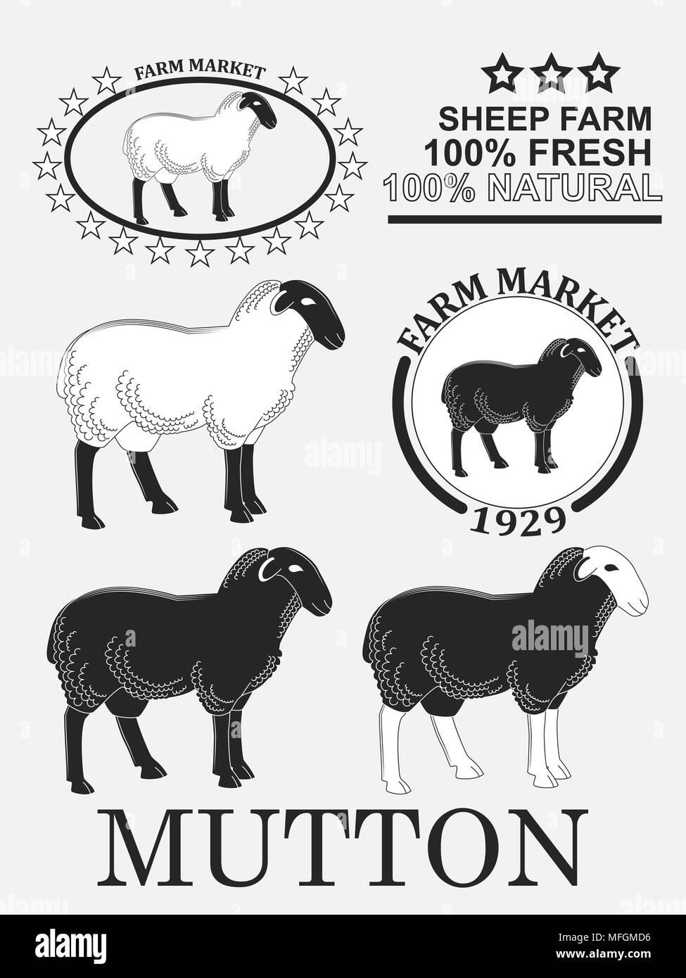 Lamb Head Black And White Stock S Alamy