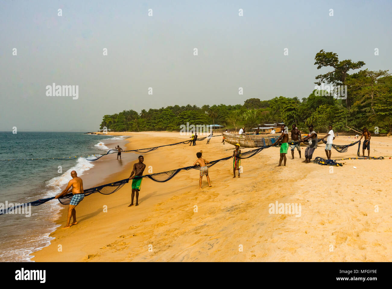 Local fishermen pulling their nets on a beach in Robertsport, Liberia, West Africa, Africa - Stock Image