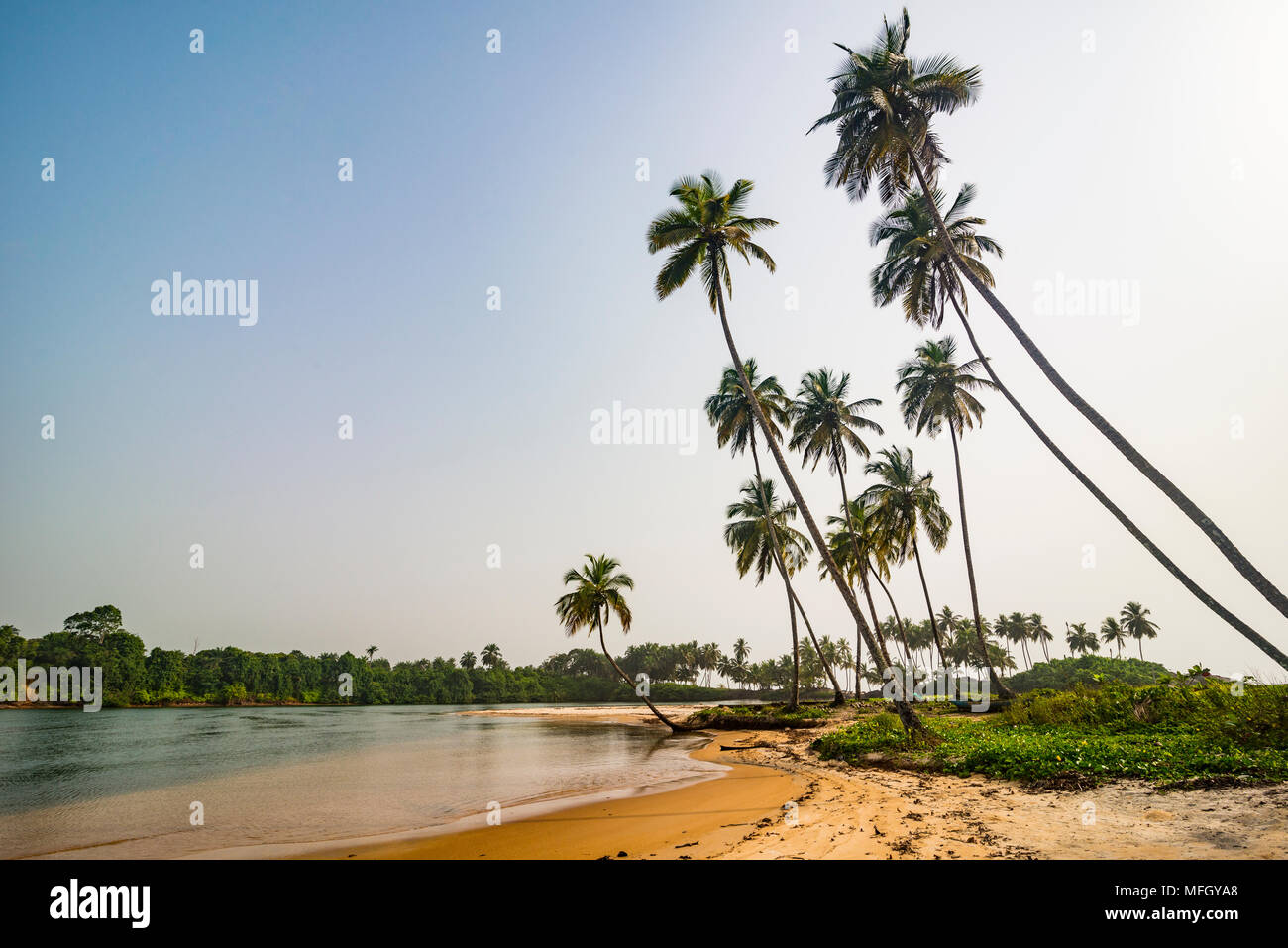 River flowing in the ocean south of Buchanan, Liberia, West Africa, Africa - Stock Image
