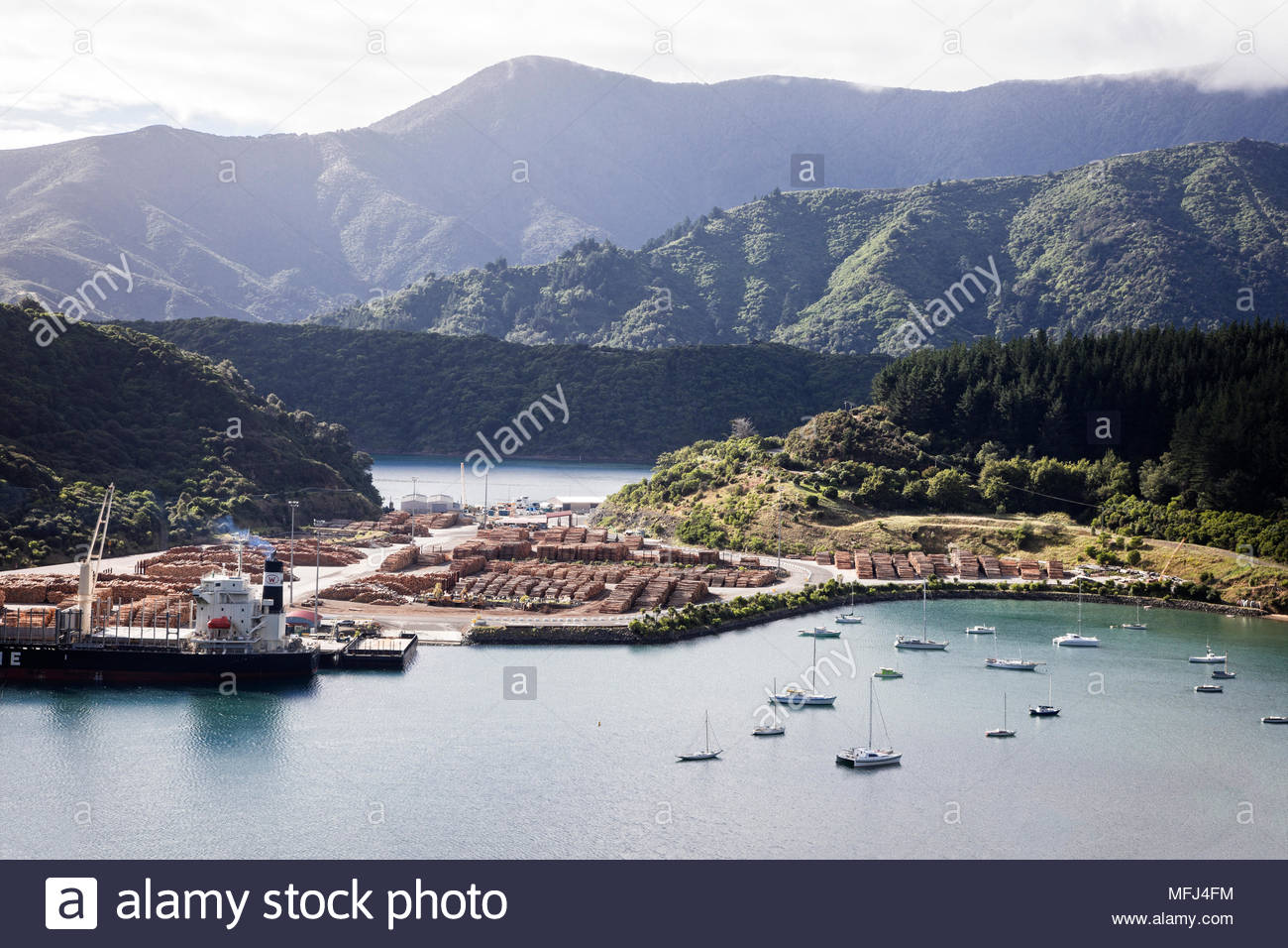Logging operations in Marlborough Sounds near Picton, South Island, New Zealand. - Stock Image