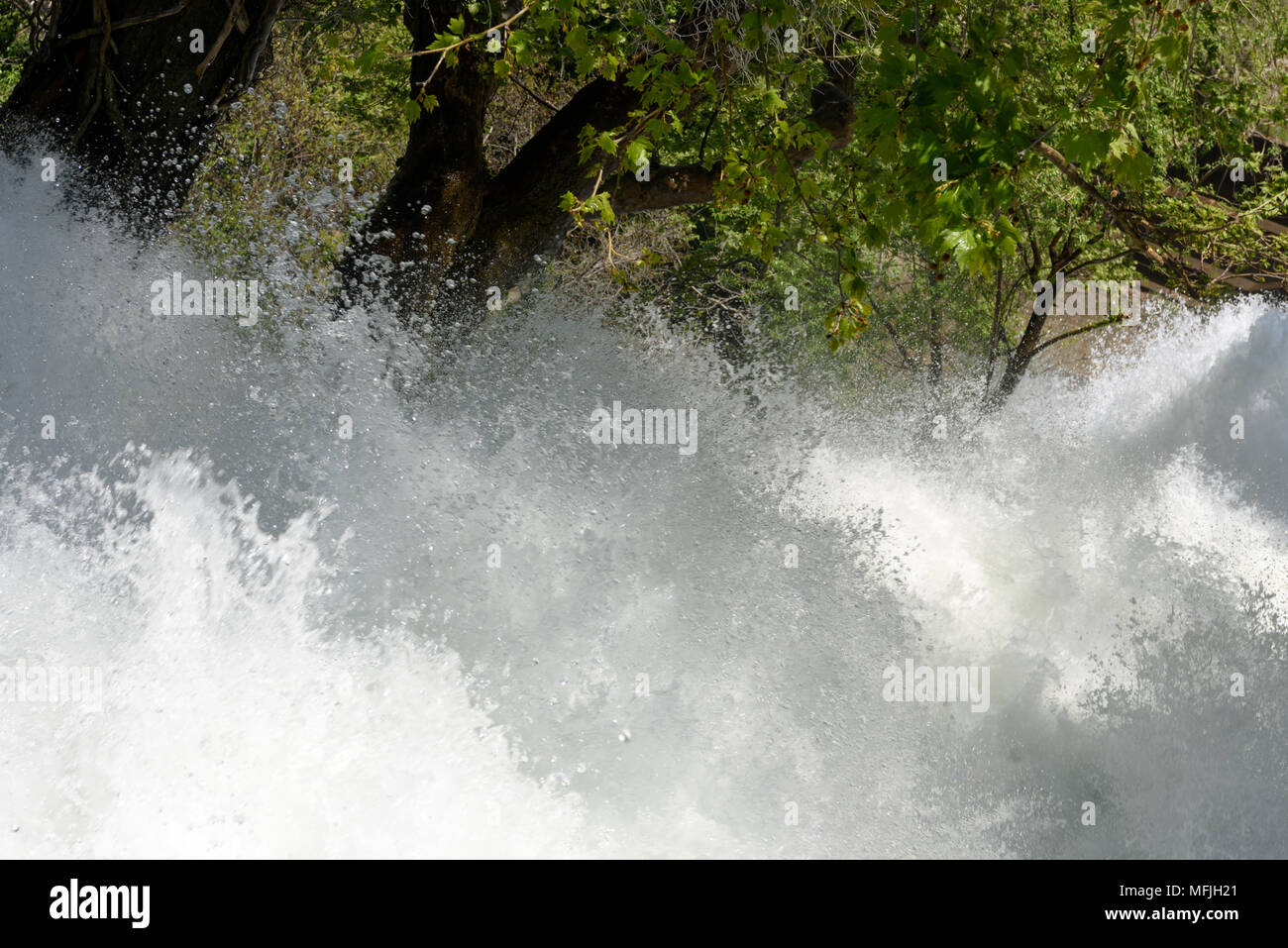Close-up of turbulent water or river stream flowing through the woods - Stock Image