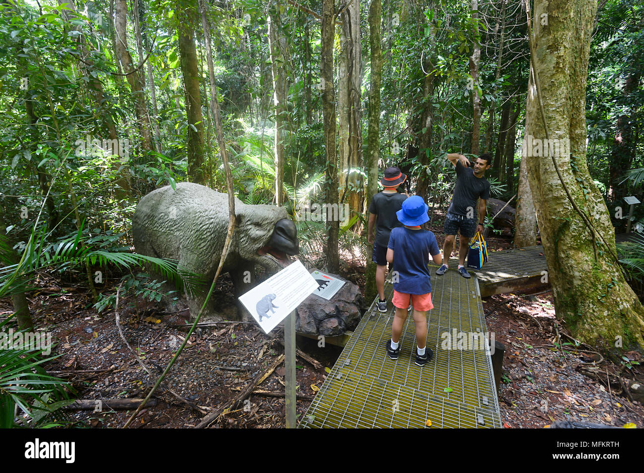Family visiting the Jurassic Forest, Daintree Discovery Centre, Daintree National Park, Far North Queensland, FNQ, QLD, Australia - Stock Image