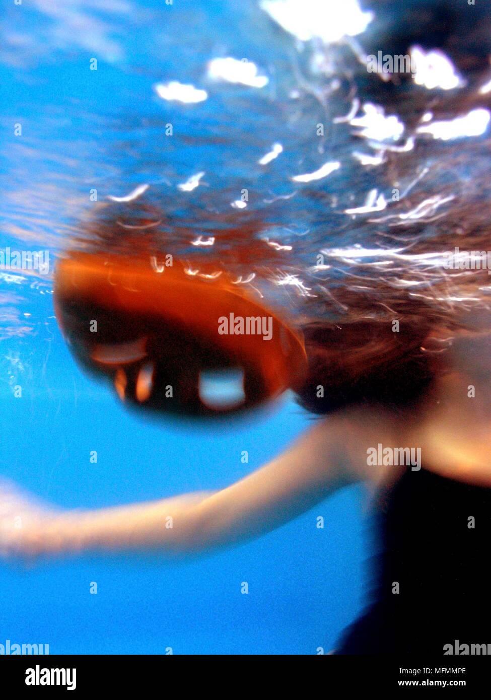 Woman swimming underwater   Ref: CRB416 10009 064  Compulsory Credit: Kate Morwenna Healey/Photoshot Stock Photo