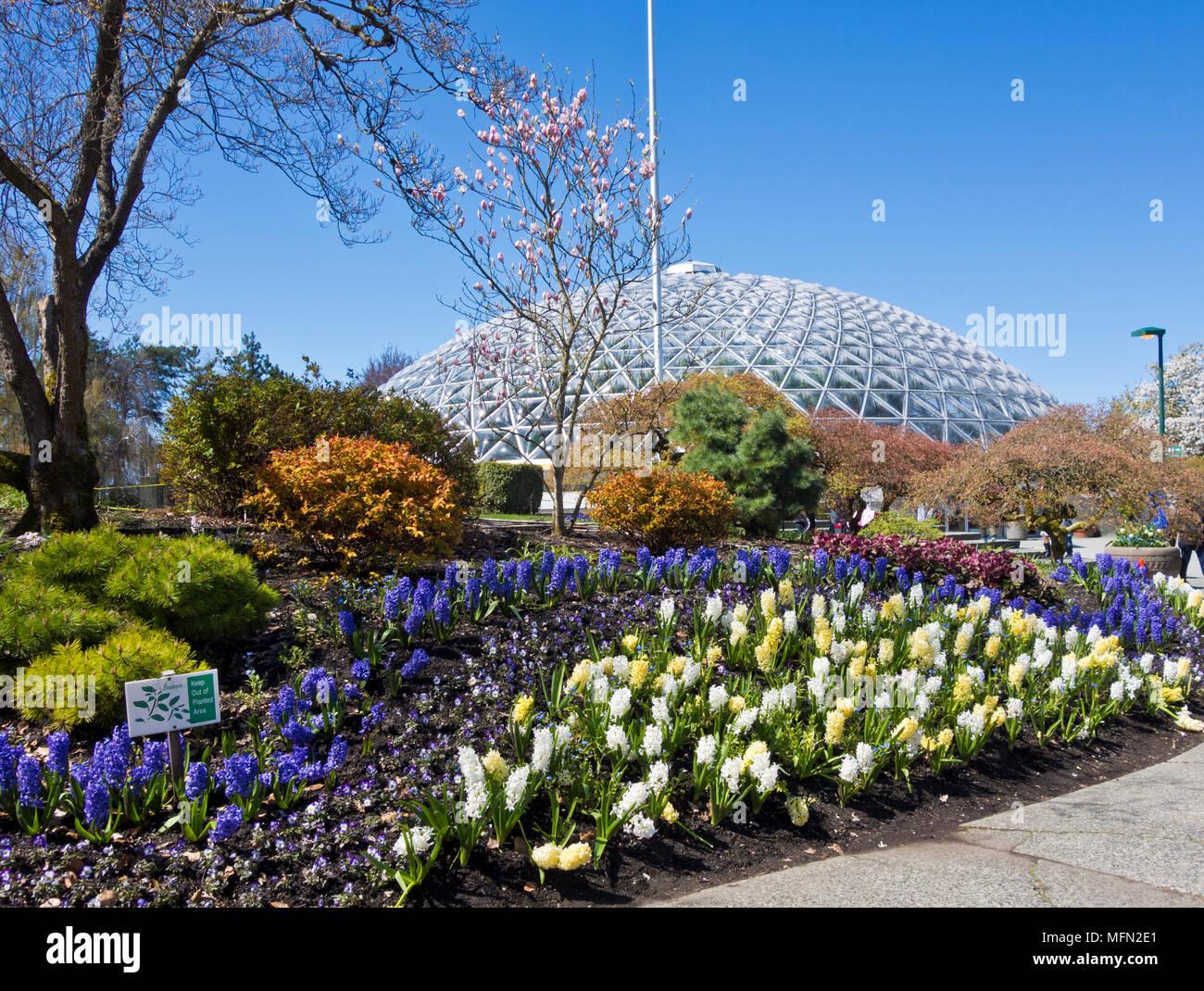 a6023d461e1b Spring in Queen Elizabeth Park