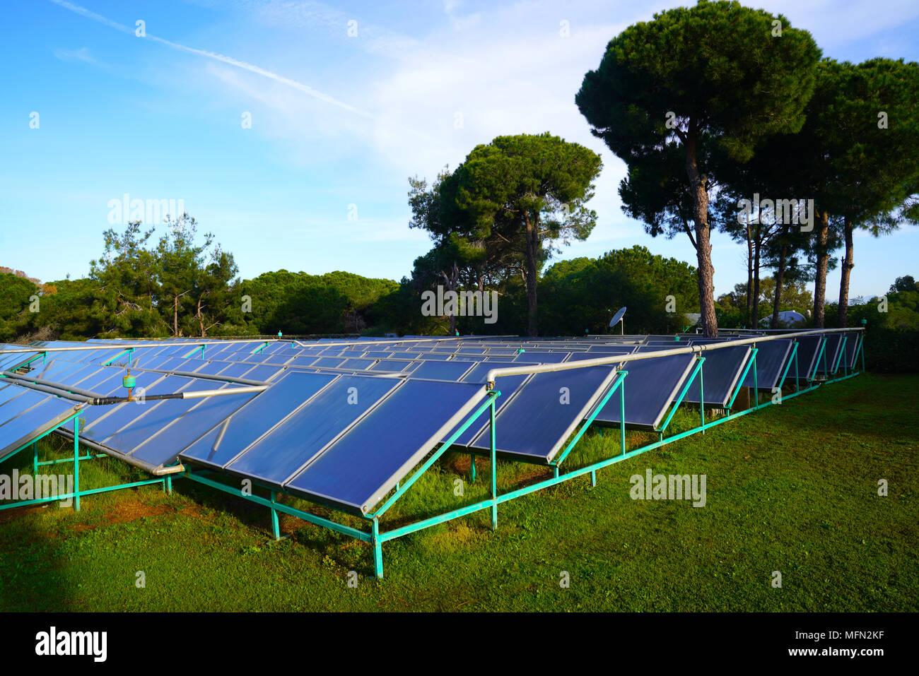 Photovoltaic power station or solar farm among trees in Antalya, Turkey - Stock Image