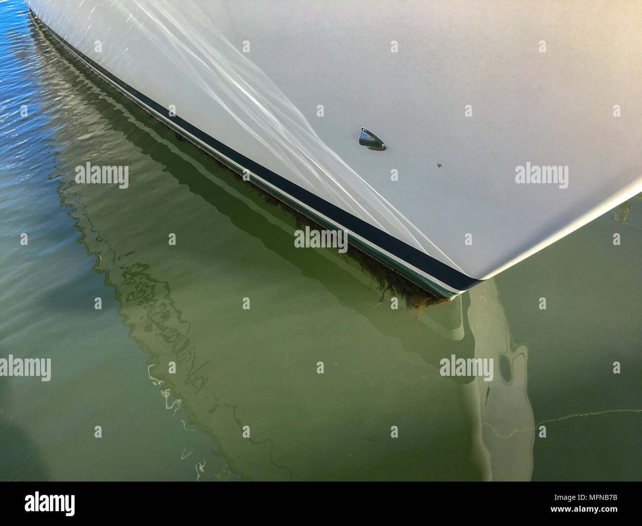 Weed growing on the hull of a sailing yacht - Stock Image