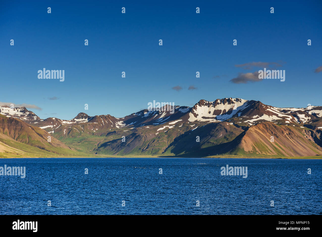 Mountains and volcanic lava sand dunes by the sea in Stokksness, Iceland. The brown bushes are lavender plants desiccated in the winter but will flourish and bloom when spring comes - Stock Image