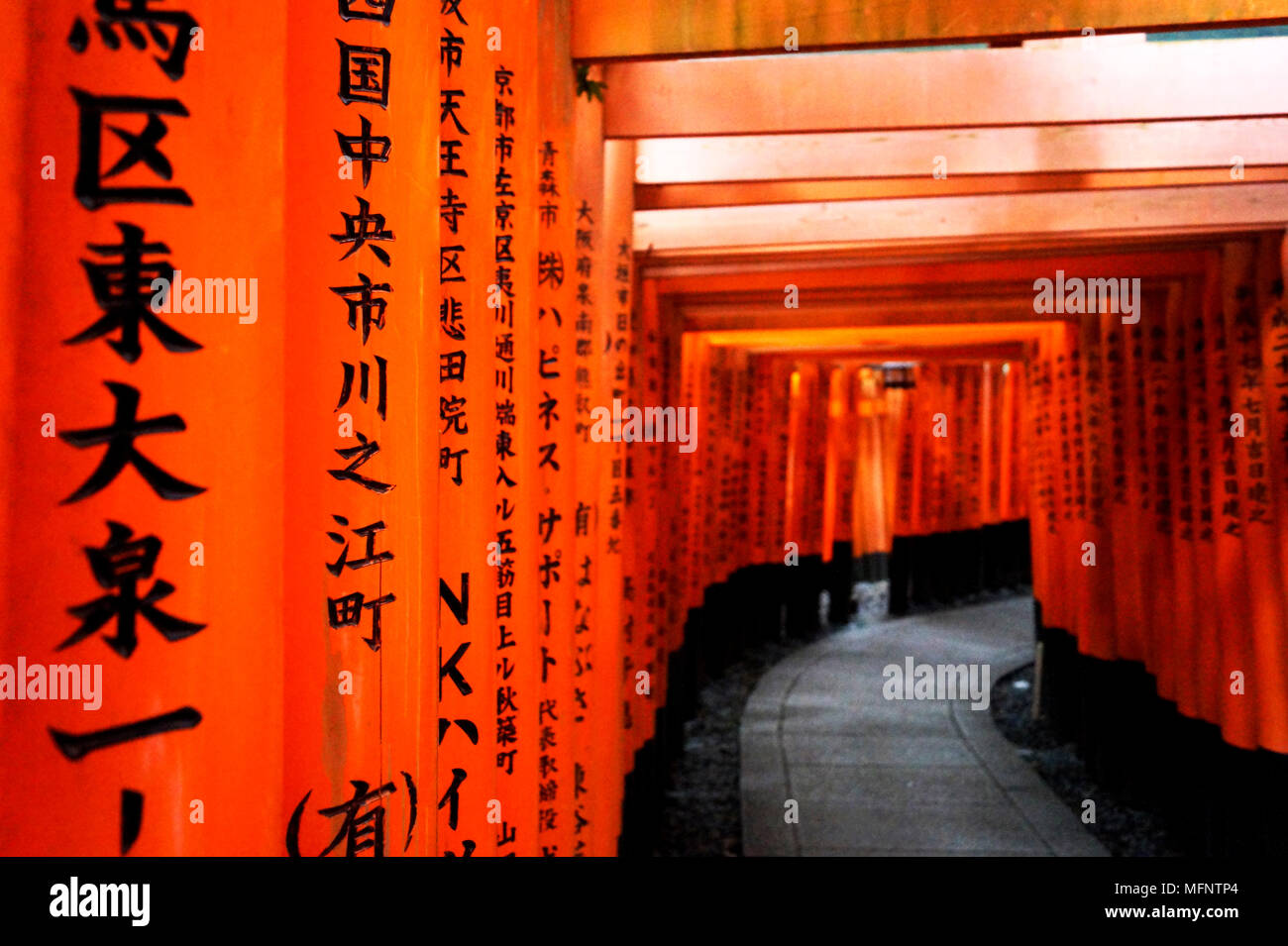 Tunnel of red torii gates - Stock Image