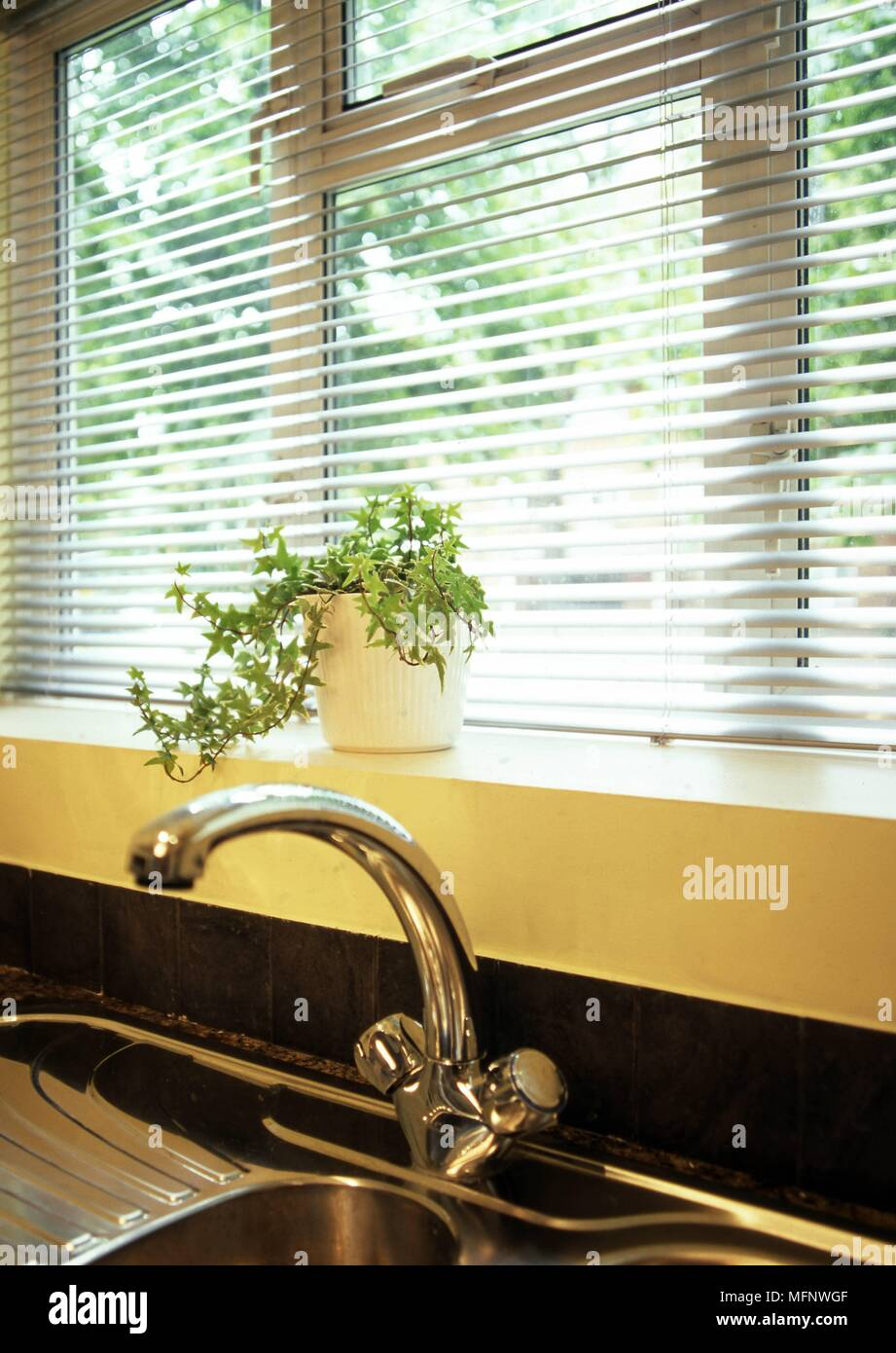 Kitchen sink and a potted plant ref crb499 103524 0003 compulsory credit rachael smith photoshot