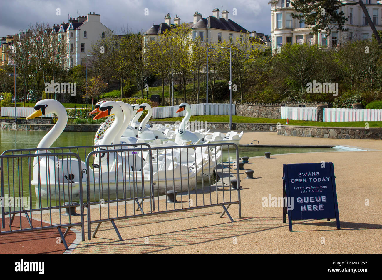 26 April 2018 Bangor Northern Ireland. Swan themed pedalos for hire in the popular Pickie  Centre sit empty on a cool spring morning - Stock Image