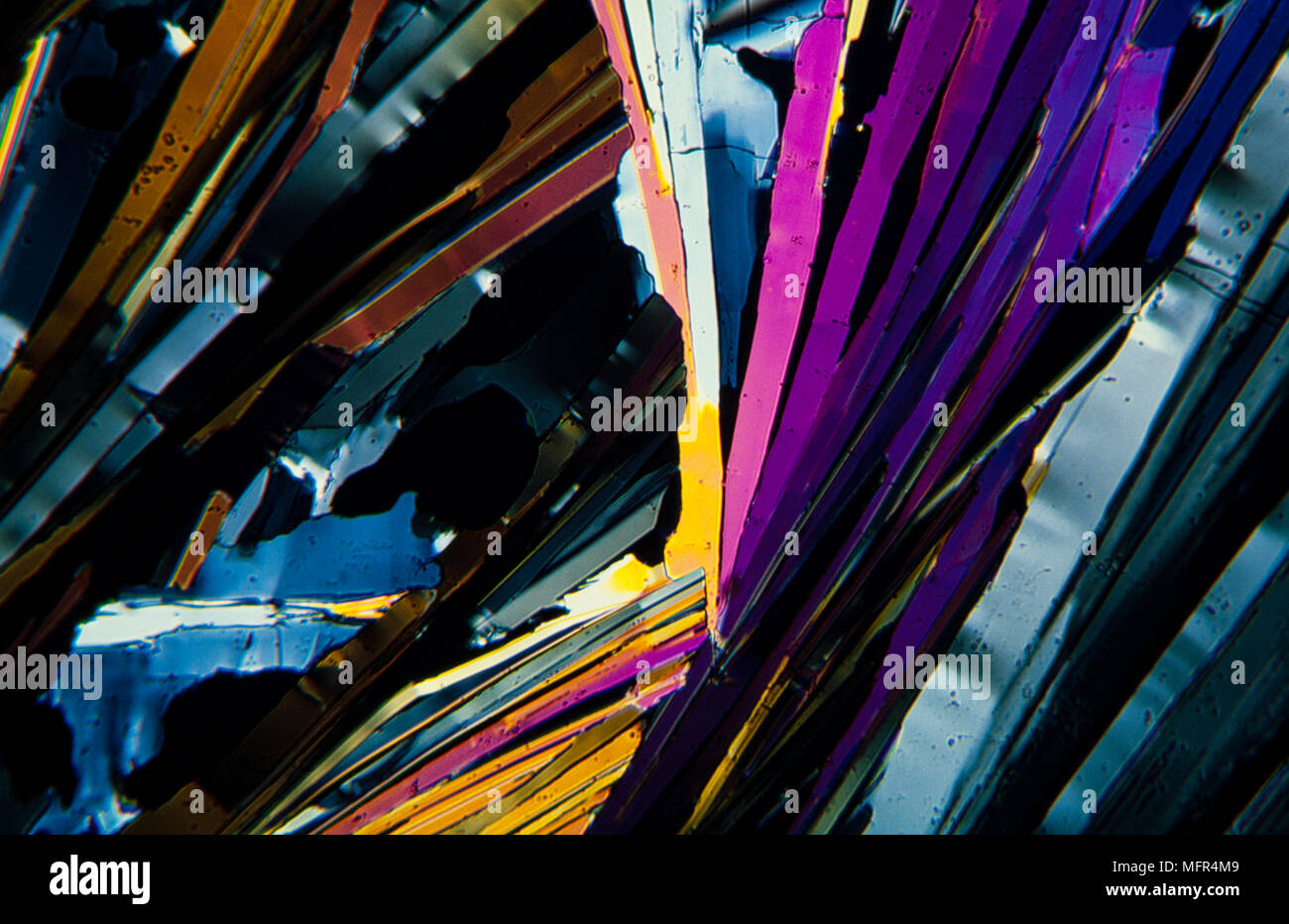 Benzoic acid cristals photomicrography with polarized light. Portugal - Stock Image