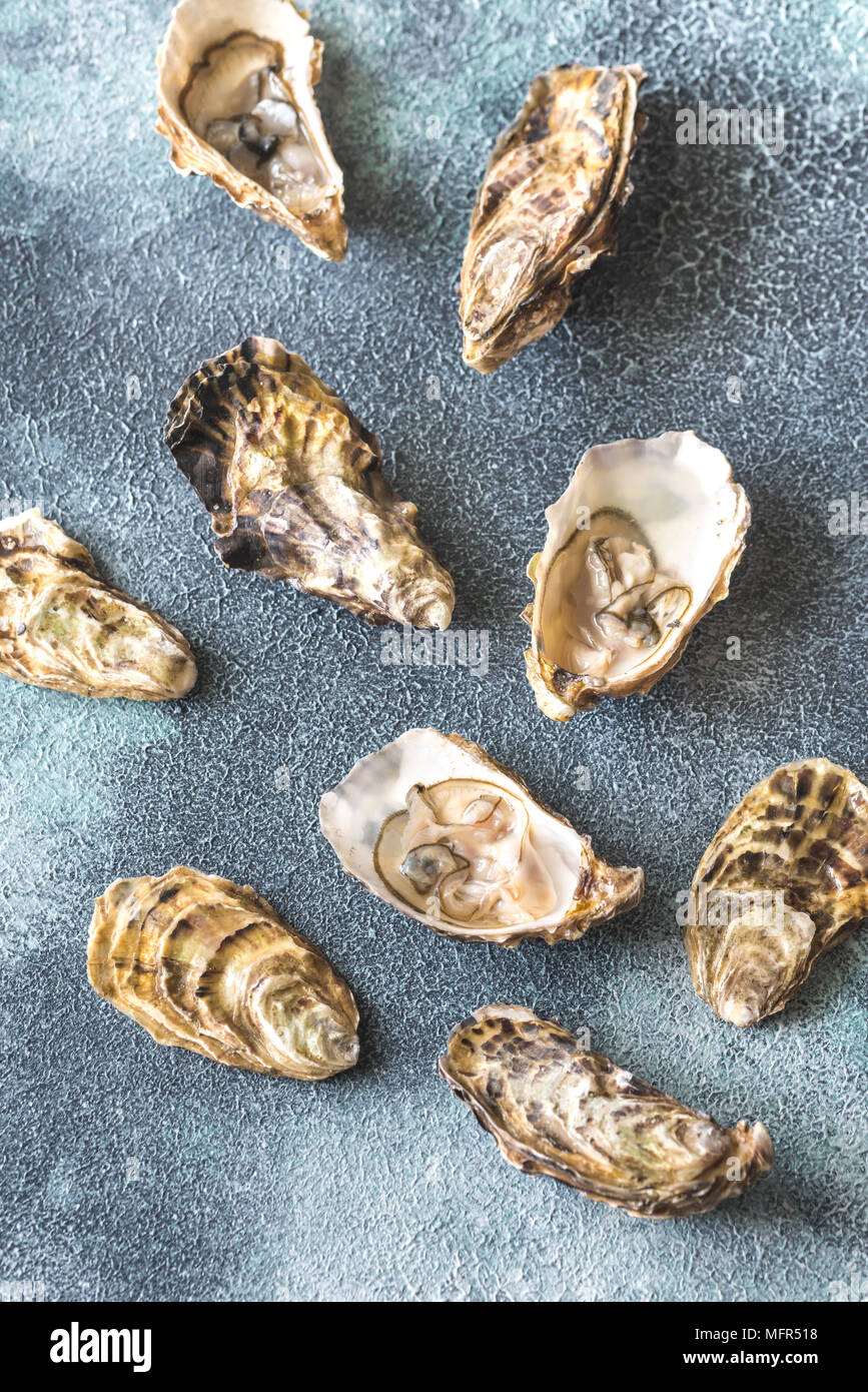 Raw oysters on the gray background - Stock Image