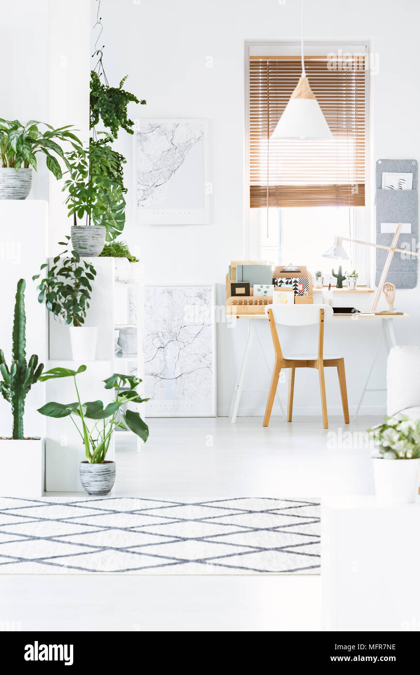 Front View Of Home Office Interior With Plants Desk Chair
