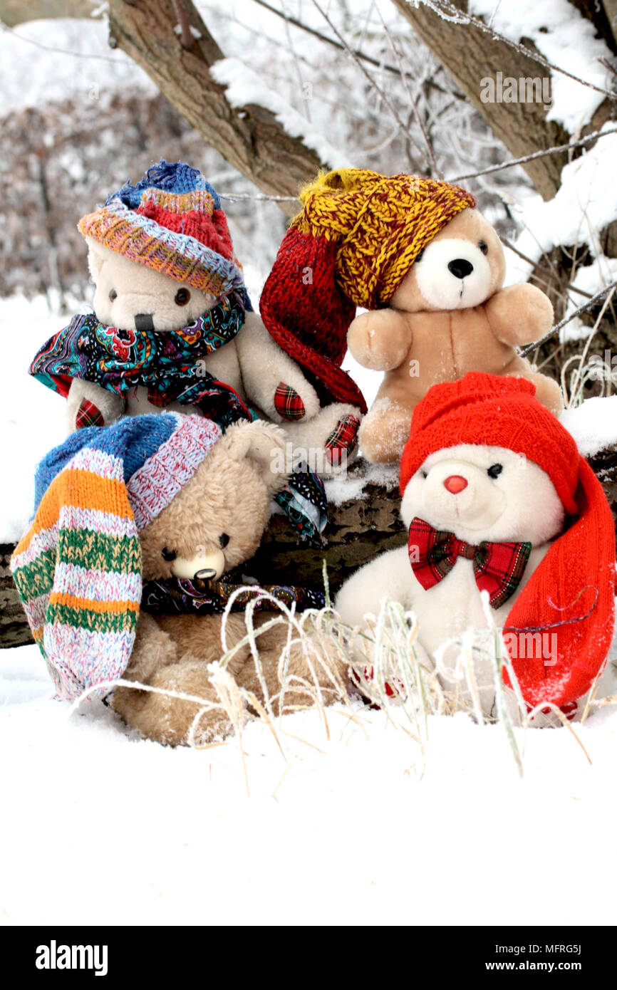 Four teddy bear friends in snow on a cold january day four teddy four teddy bear friends in snow on a cold january day four teddy bear friends sit together under the frozen branches of a large willow theyve just altavistaventures Images