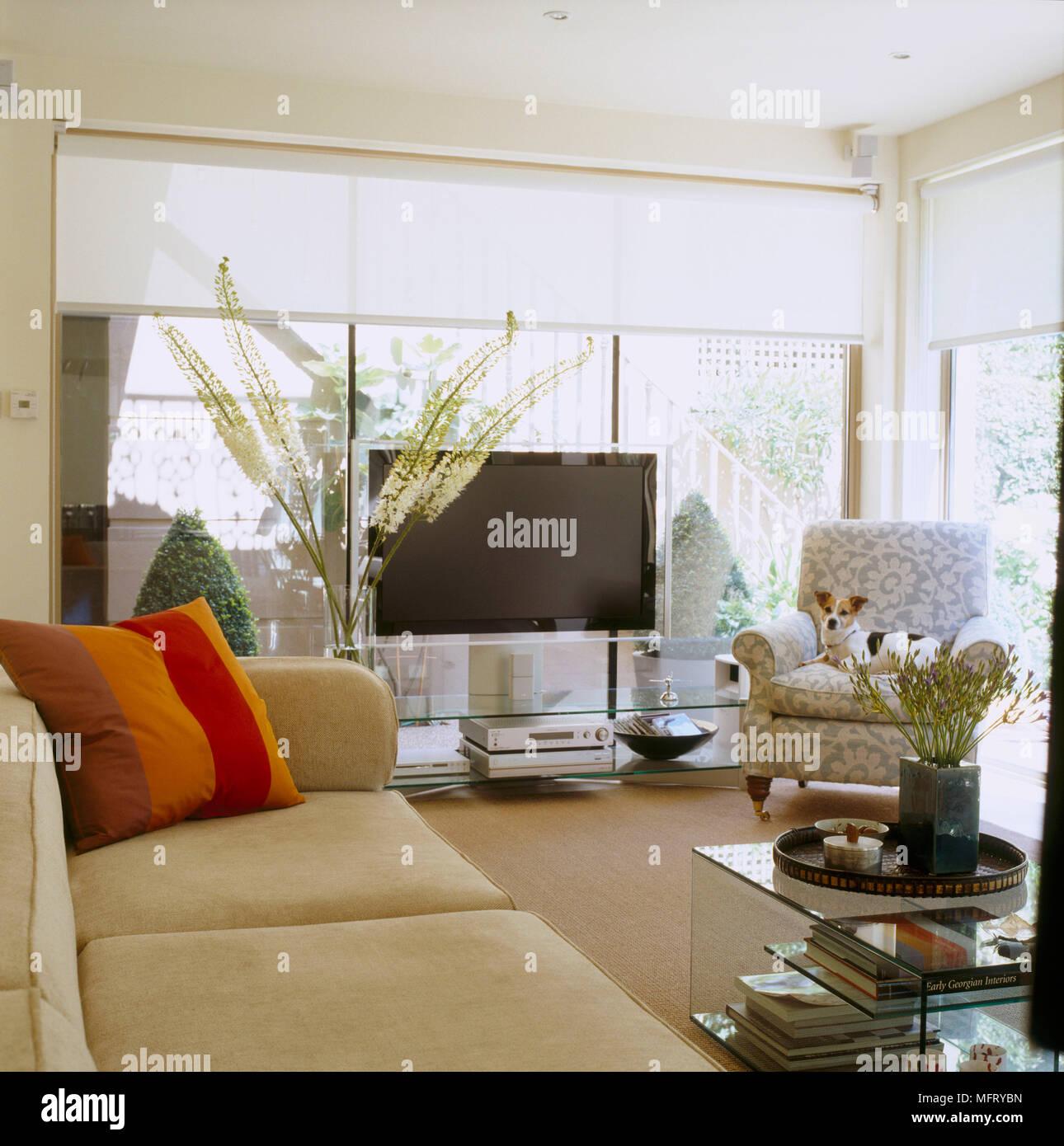 A Modern Sitting Room Upholstered Sofa Plasma Television Roller