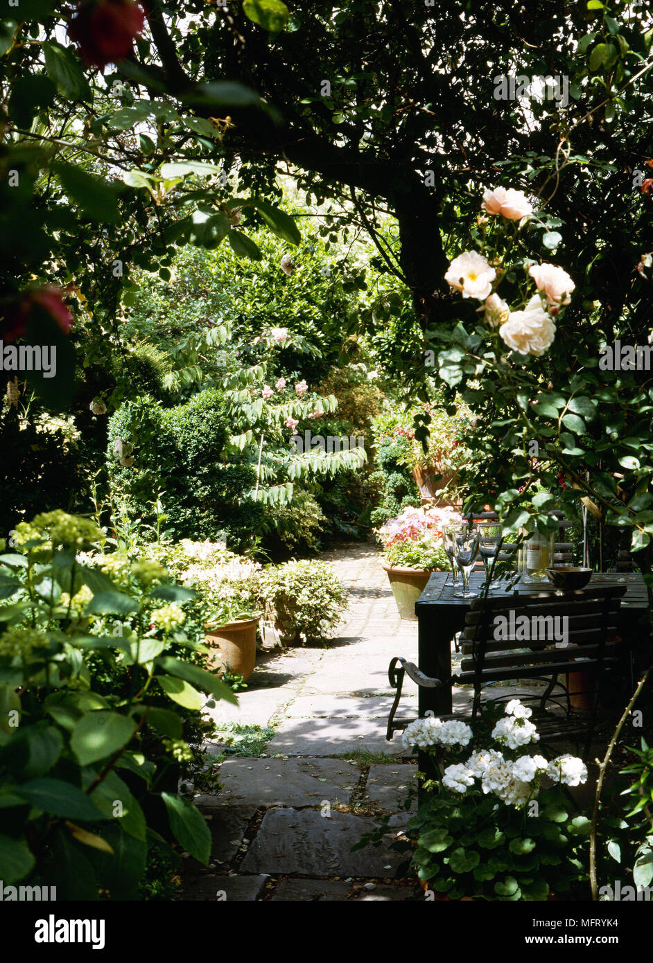 Garden Detail Paved Patio Area Wooden Table Chairs Terracotta Pots Flowers  Trees Gardens Secluded Private Paving Patios Shrubs Sunlight Shadows