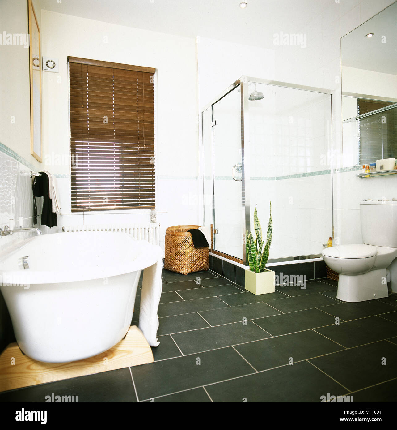 White bathroom with freestanding bathtub and shower cubicle Stock ...