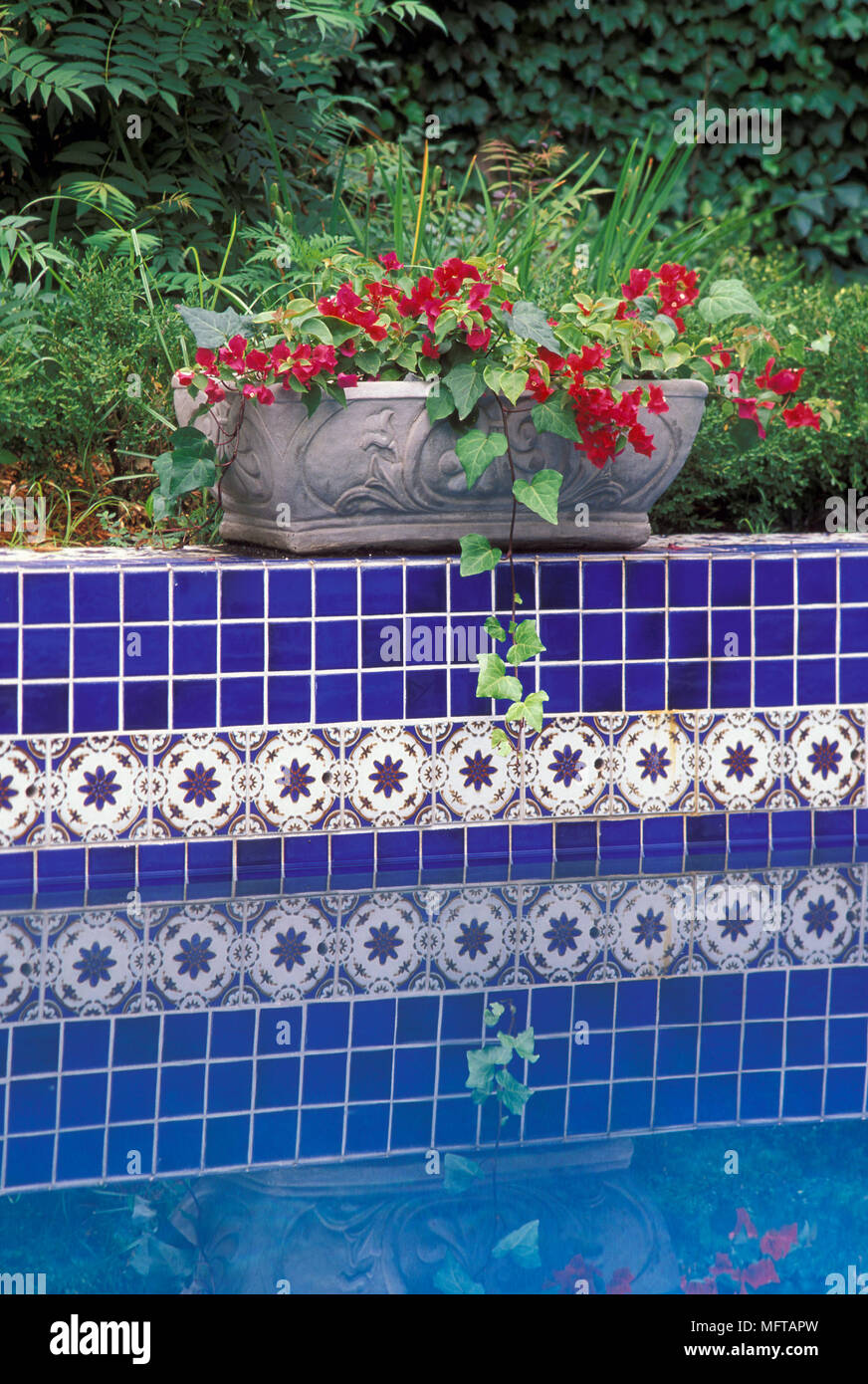 decor pool dsc graceful tile renovation things decorative all tiles